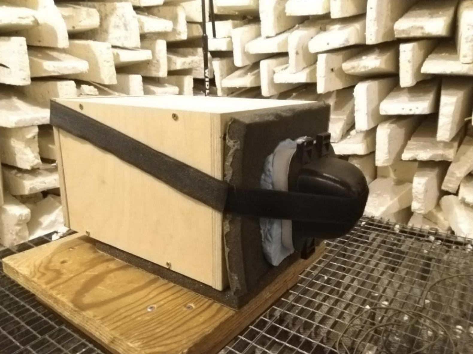 Badania dźwięku nauszników dla psa