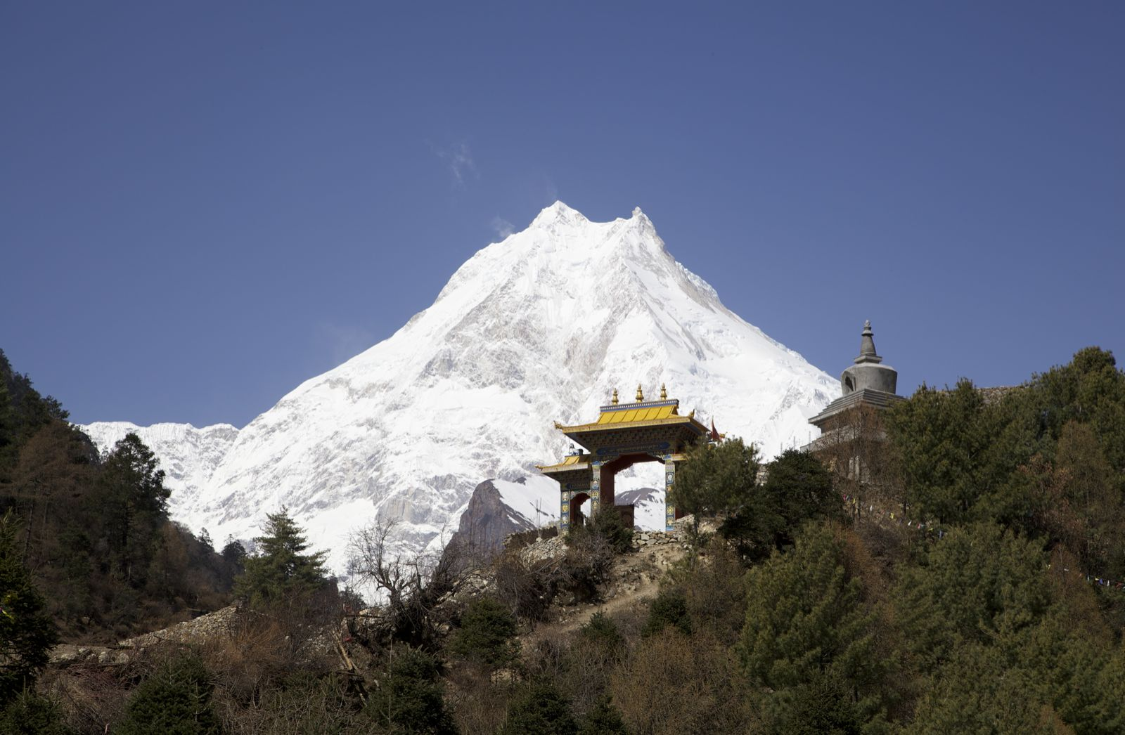 Manaslu seen from Lho