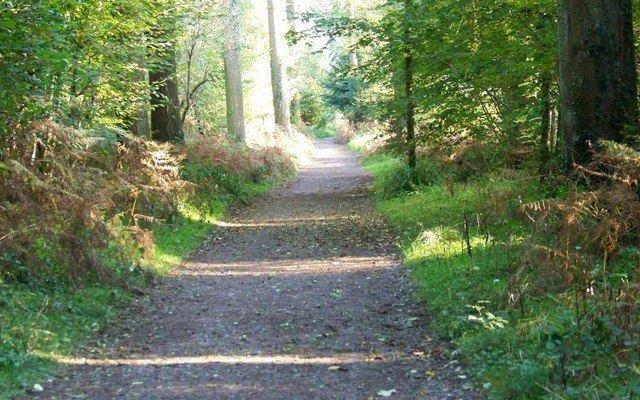 Image result for Shearwater walk path