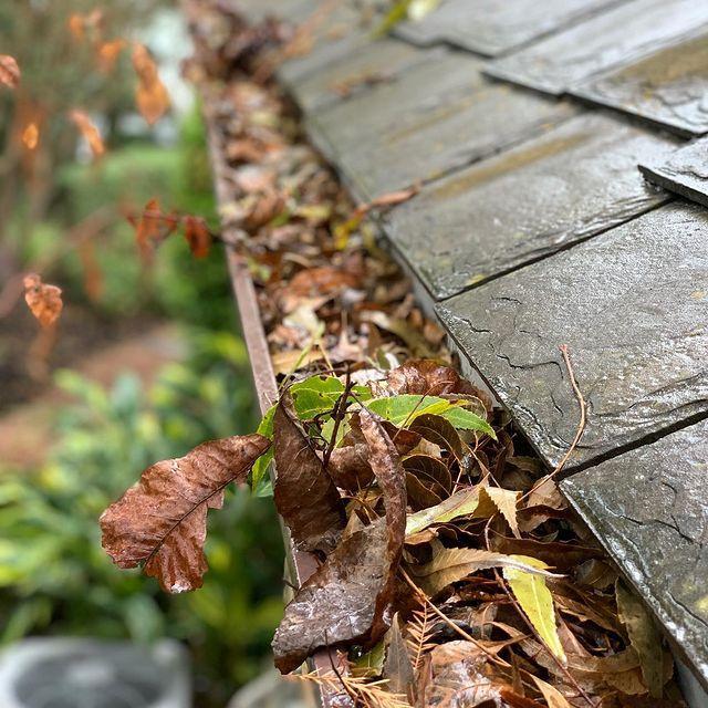 Leaves and debris clogging gutter system