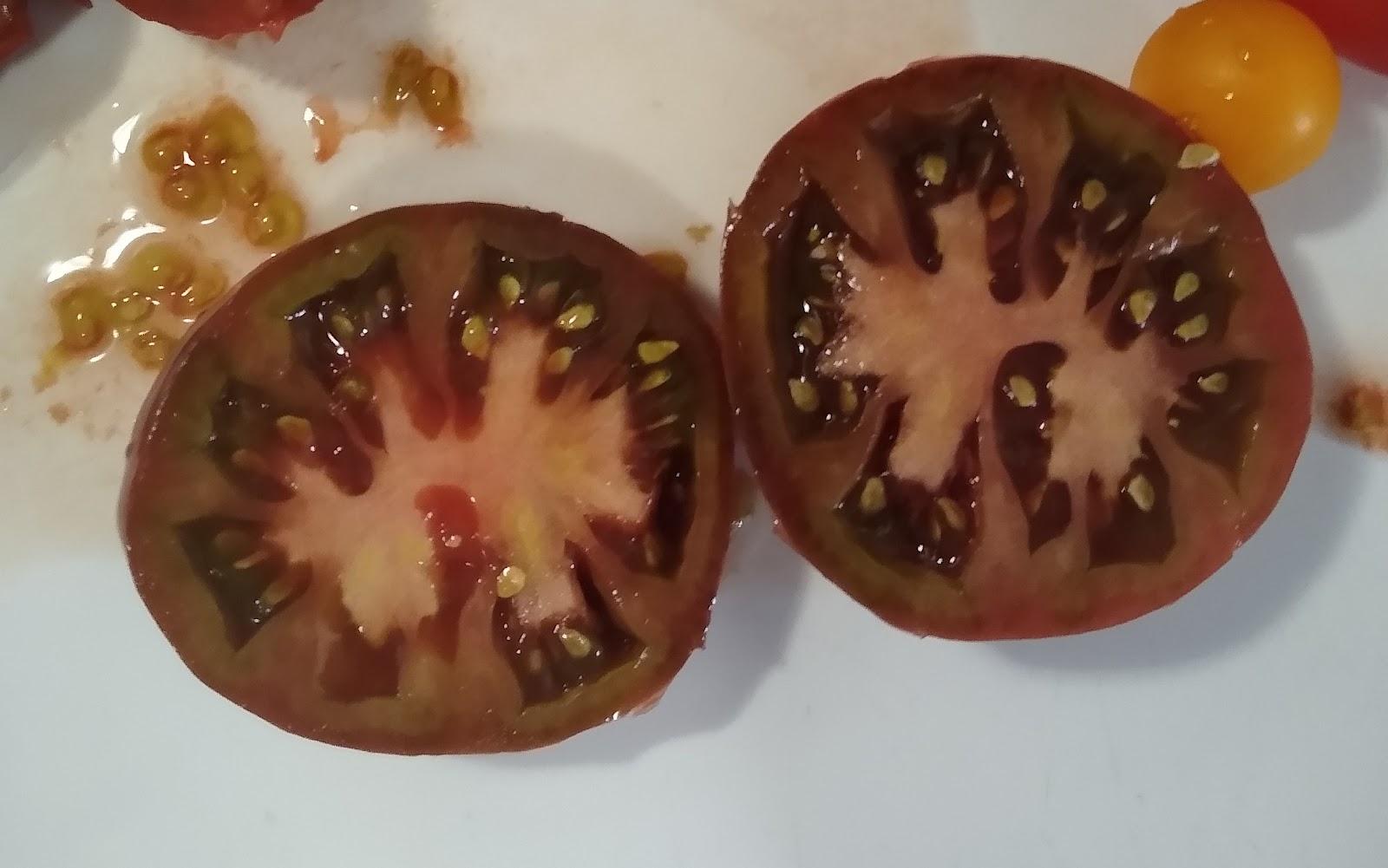 black brandywine tomato picture