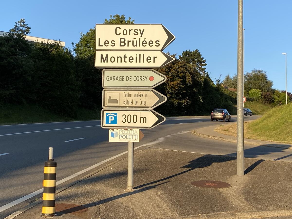Le drame s'est passé sur les hauts de la commune de Lutry, à La Conversion.