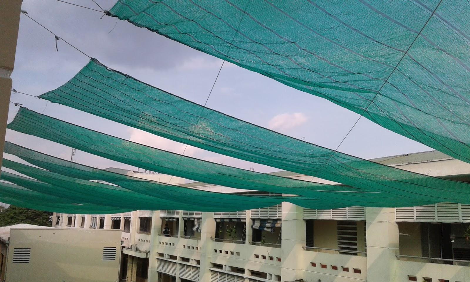 Kết quả hình ảnh cho lưới che nắng mà u xanh