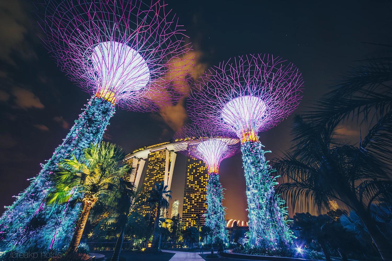 Khám phá Singapore - nhất định phải check-in 5 nơi này - ảnh 5