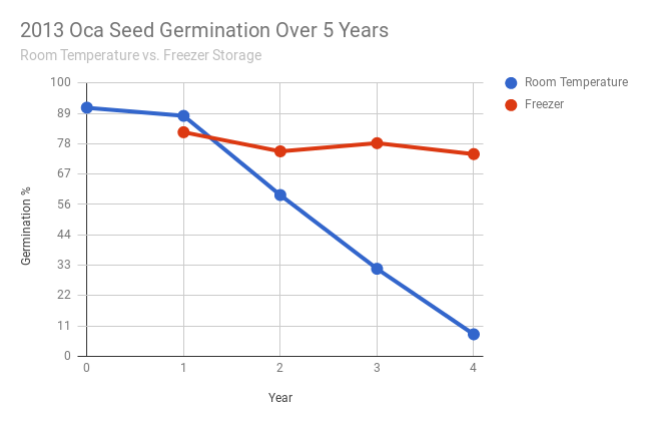 Oca (Oxalis tuberosa) - The Cultivariable Growing Guide
