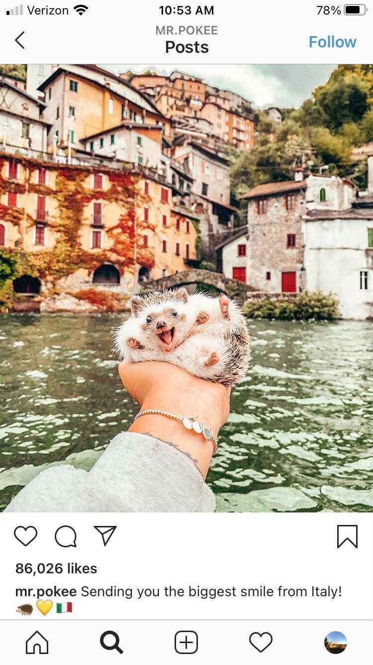 travel Instagram mr.pokee