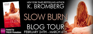 slow burn - blog tour.jpg