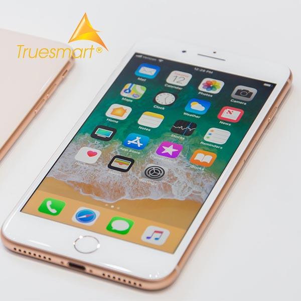 Thay cáp rung iPhone 8/8Plus/X