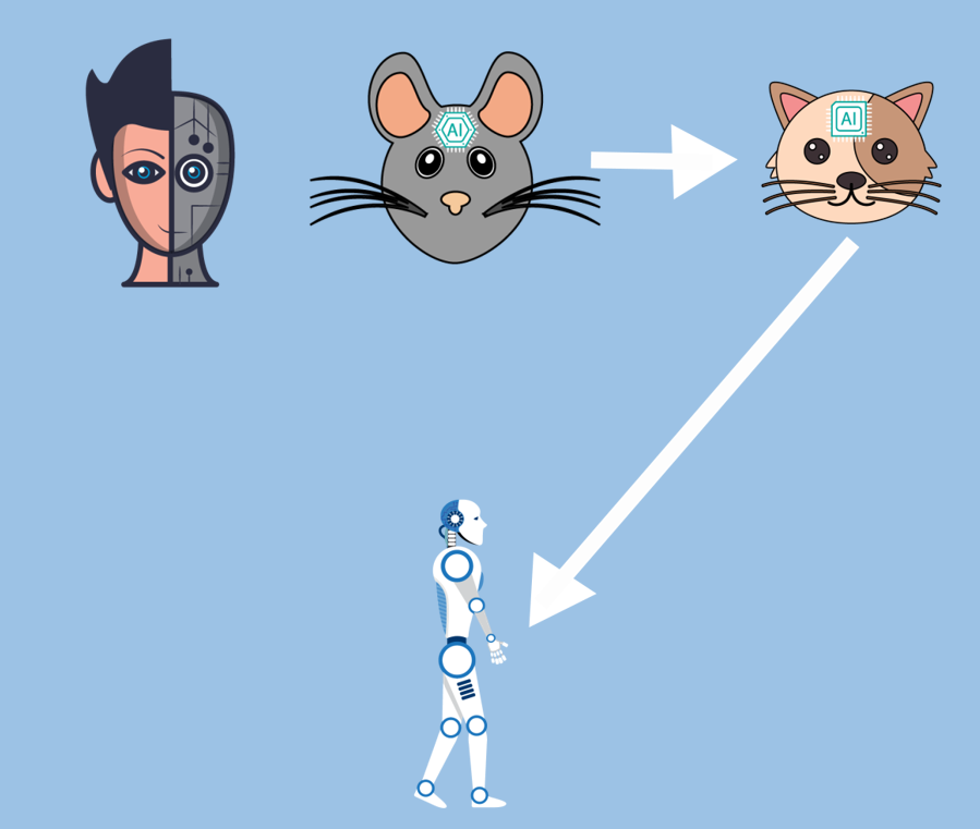Mouses to Human level Artificial Intelligence