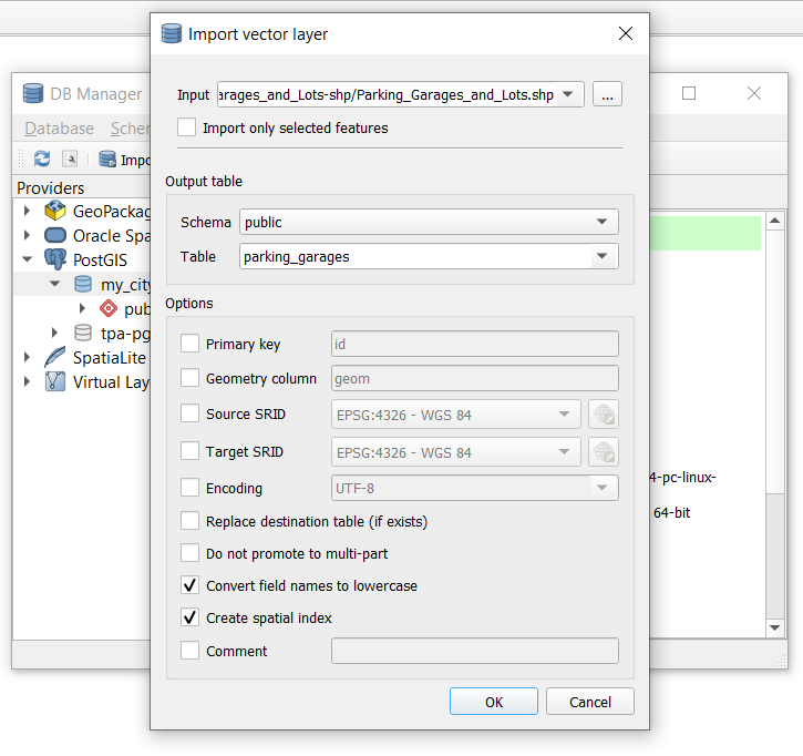 """Dialog box displaying settings for """"Import vector layer"""""""