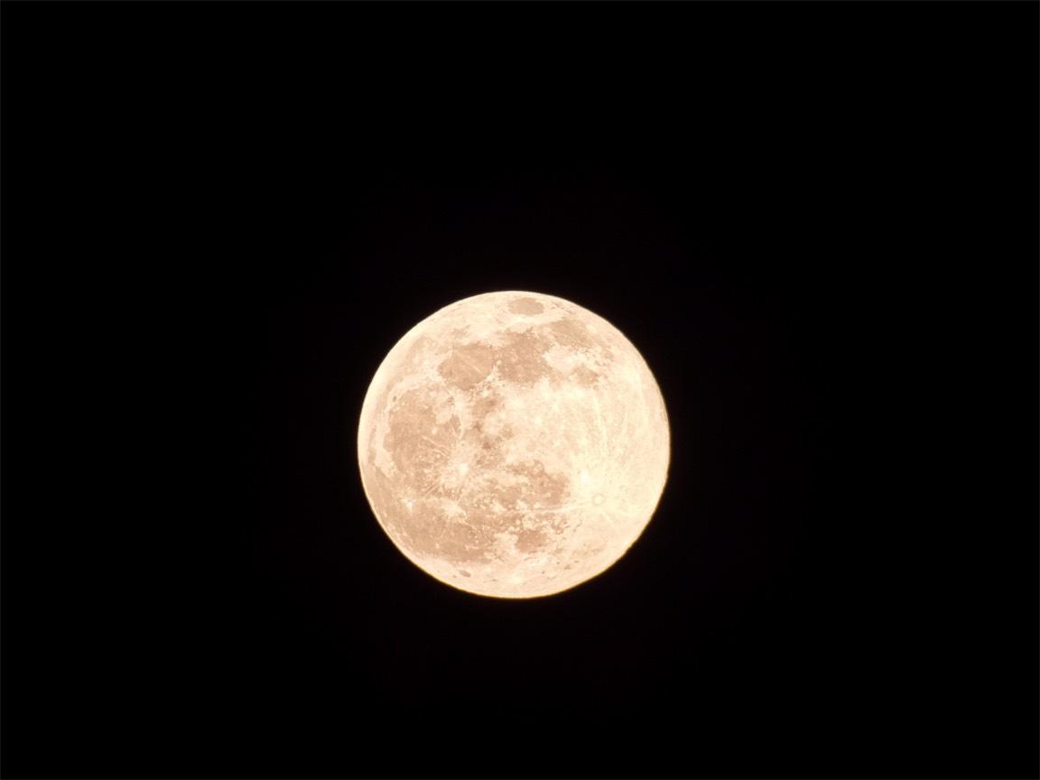 Milk Moon 8.jpg