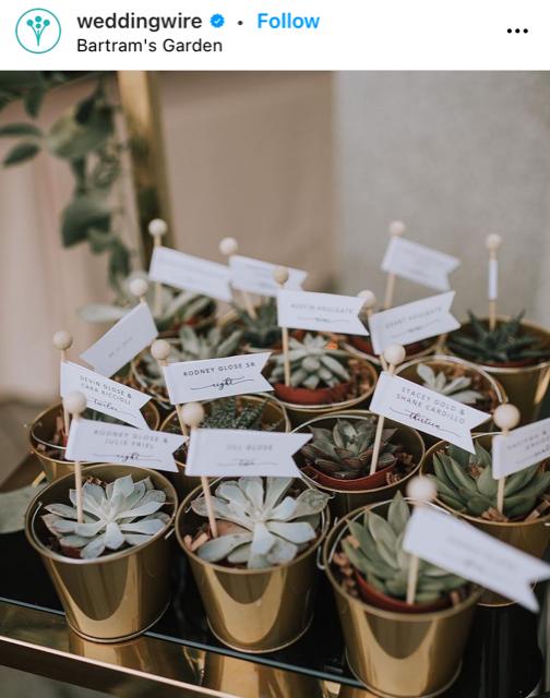 mini succulents wedding favor ideas