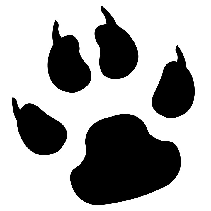 Paw Print, Pawprint, Dog, Pet,