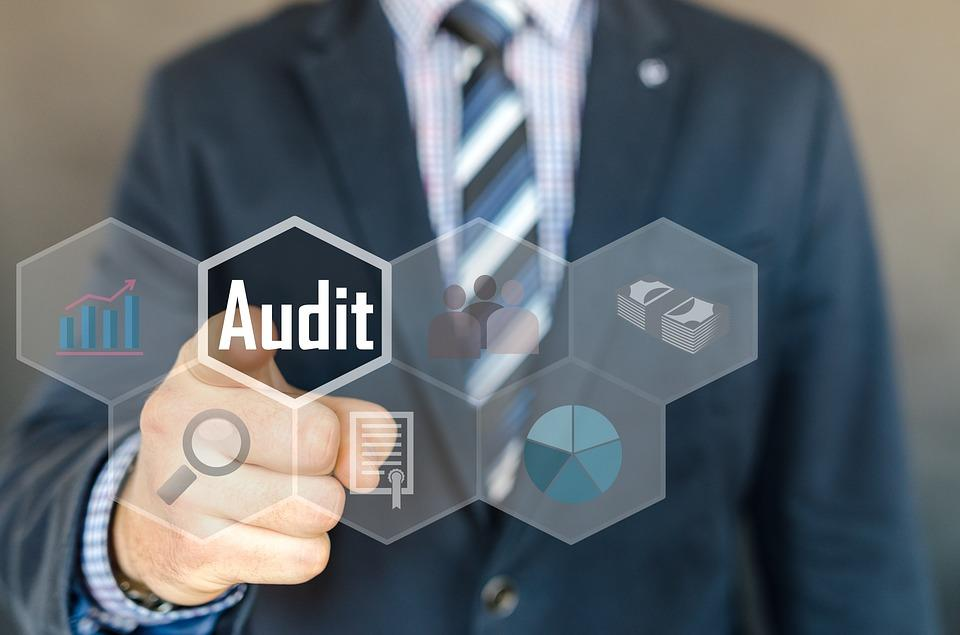 Audit, Inspection, Examination, Accounting, Auditor