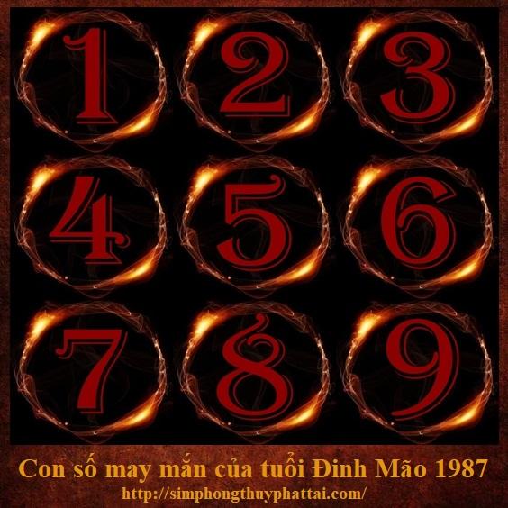 Luận tìm con số may mắn của tuổi Đinh Mão sinh năm 1987