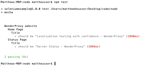 Output from npm test