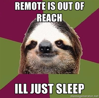 Just+lazy+sloth+100+oc+lets+see+what+happens_947fa8_3820578.jpg