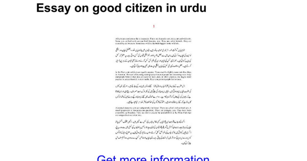 Essay on citizenship