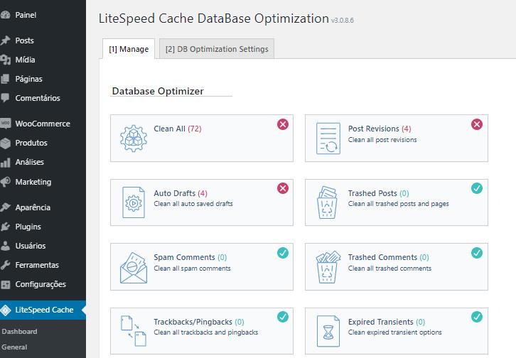 opções de otimização de banco de dados no plugin LiteSpeed Cache