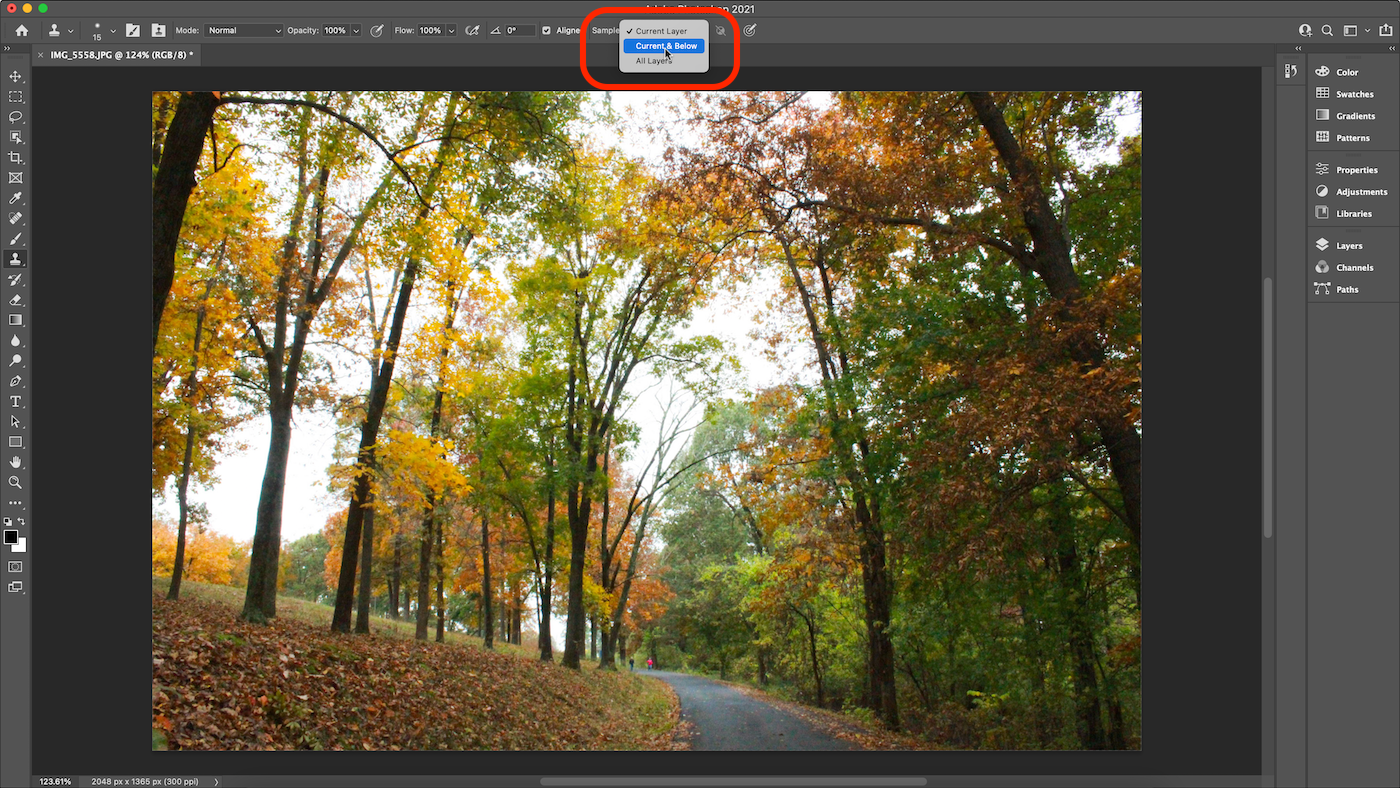 Screenshot of sample setting changed in Photoshop.