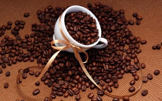 Tìm nguồn cung cấp arabica giá sỉ cho quán chất lượng
