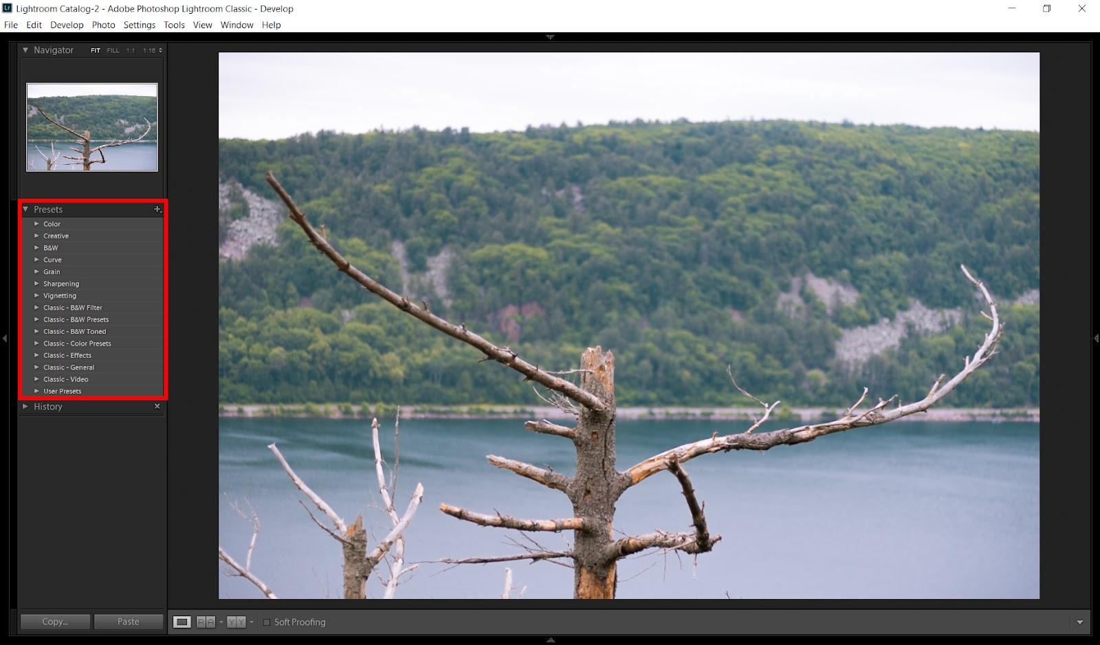 Lightroom vs  Photoshop: Which Do You Choose? - The Camera Company