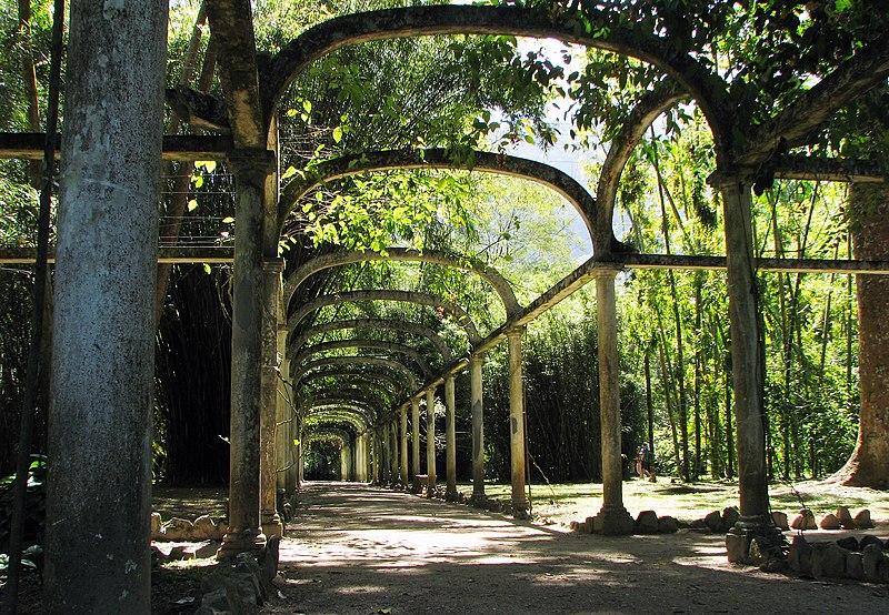 File:Jardim Botanico - Rio de Janeiro.jpg
