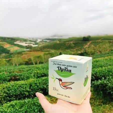 Trà thảo mộc giảm cân Vy Tea mang đến cho bạn vóc dáng hoàn hảo