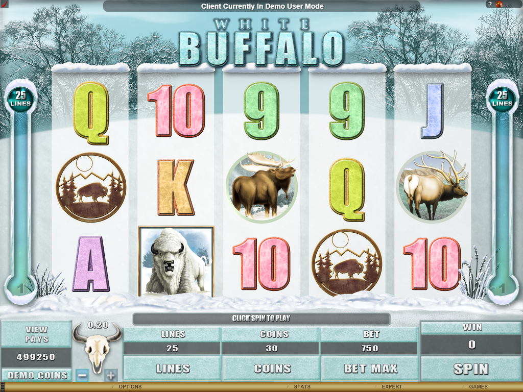 White Buffalo Slots Game Review