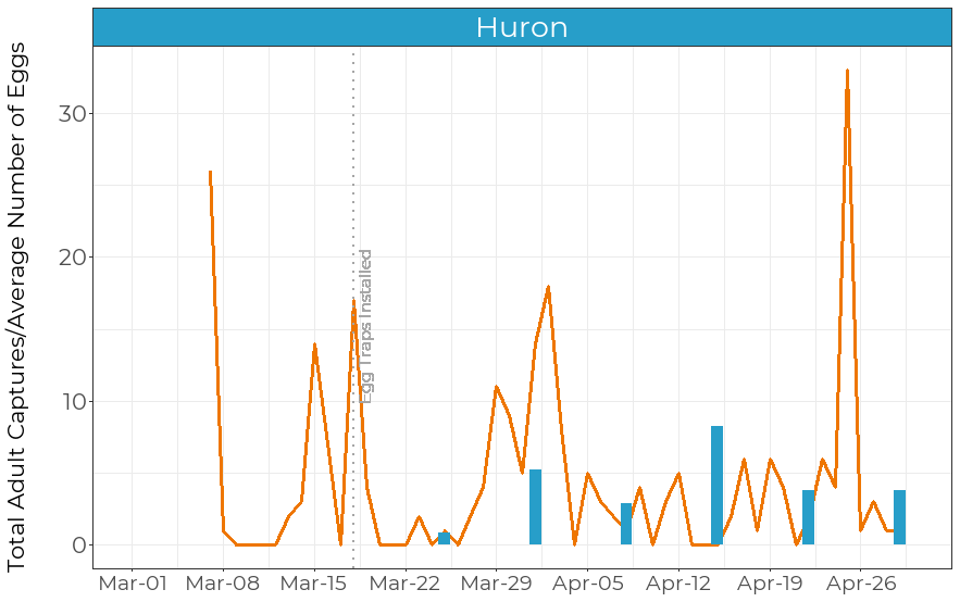 Total adult captures from pheromone traps (orange solid line) and average number of eggs found in egg traps (blue bars) at a site in Huron.