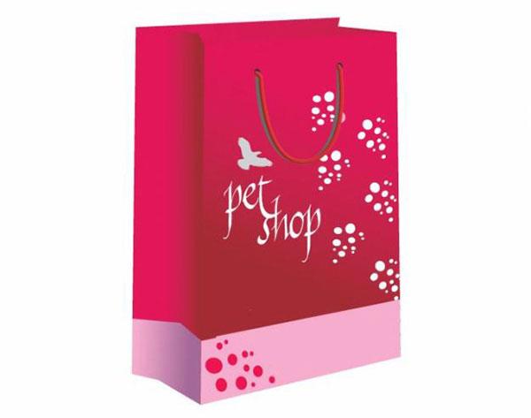 Dịch vụ in túi giấy cho shop thời trang giá rẻ