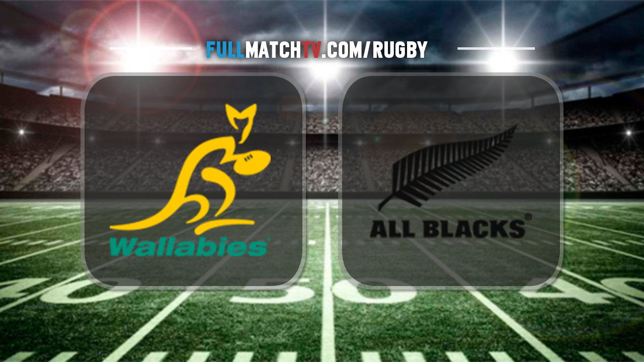 Image result for australia vs new zealand rugby