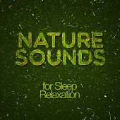 Nature Sounds for Sleep Relaxation