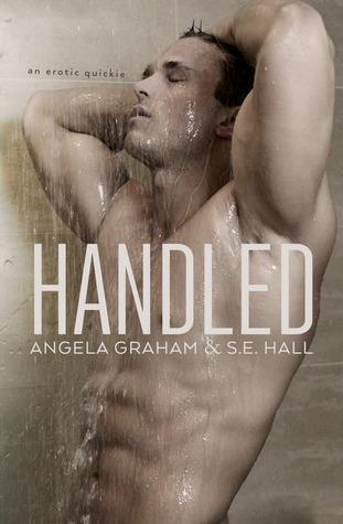 handled cover.jpg