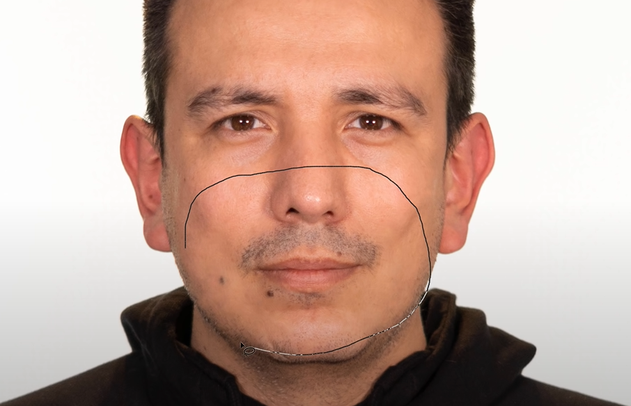 Create a selection around the nose and mouth.