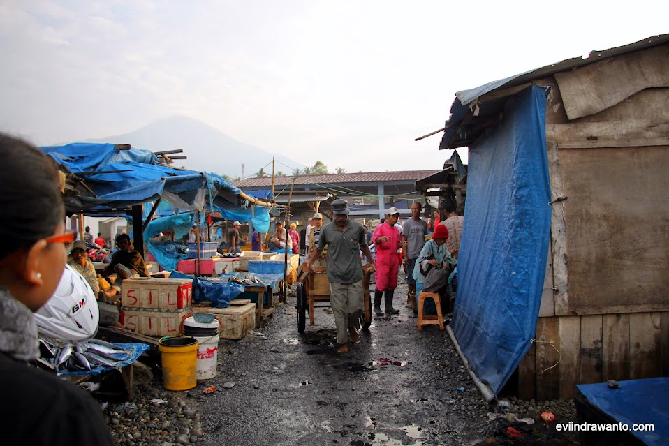 pasar ikan dermaga kotaagung