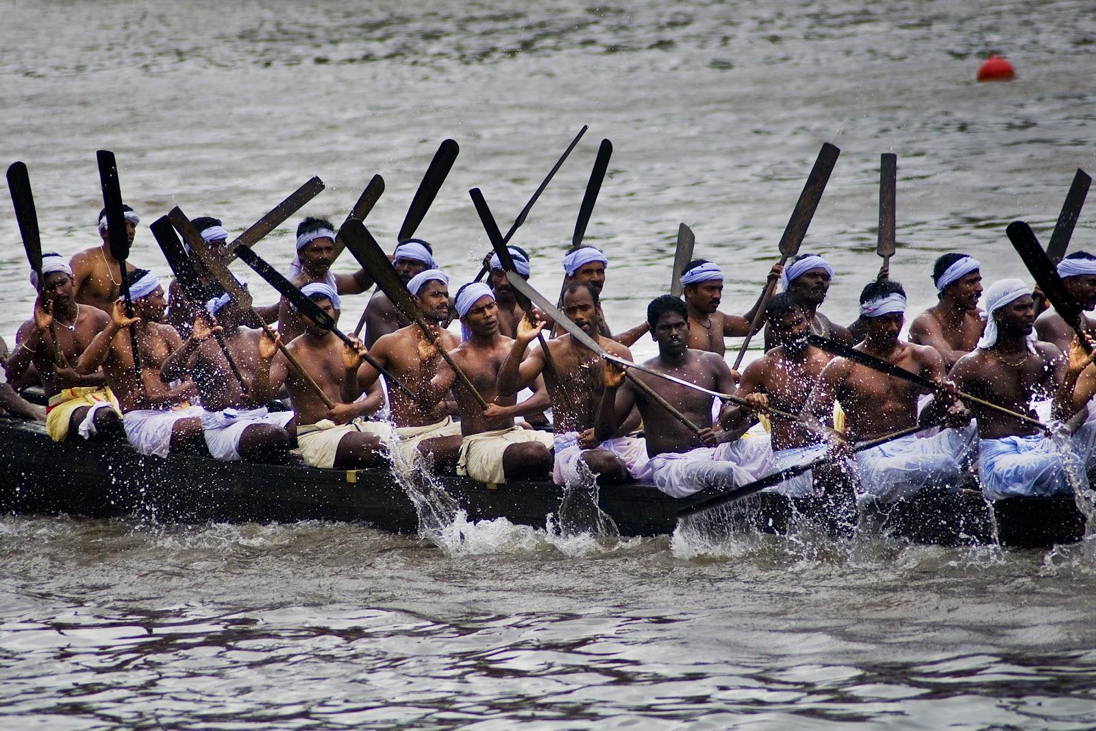 ओणम त्यौहार के शुभ अवसर पर नौका-दौड़ की प्रतियोगिता में भाग लेते लोग।