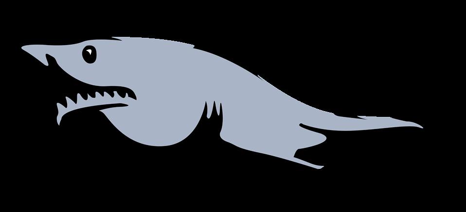 Illustration of a shark : Free