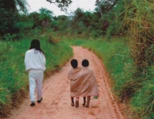 Guarani Roguata (caminhada). Foto: Reprodução