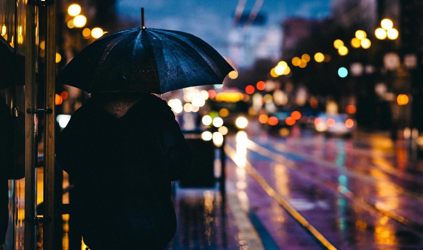 person holding umbrella in the rain