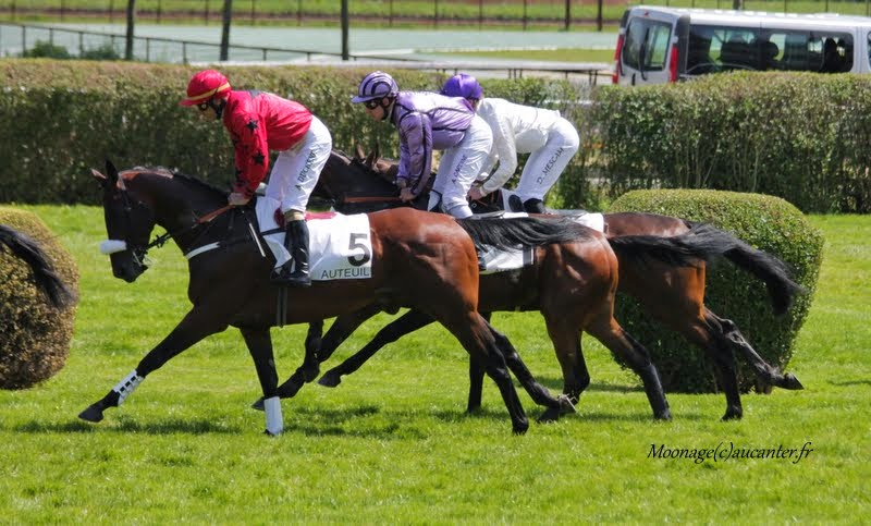 Photos Auteuil 22-05-2015 DCmG3ueLv0MmnvmbCSWmq6KEOskXAmch_CGNczKB-bLW=w800-h483-no
