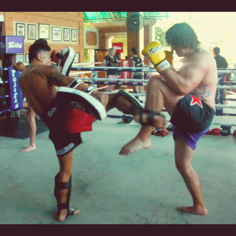 Description: Macintosh HD:Users:brenton:Downloads:Muay Thai Pic1.png