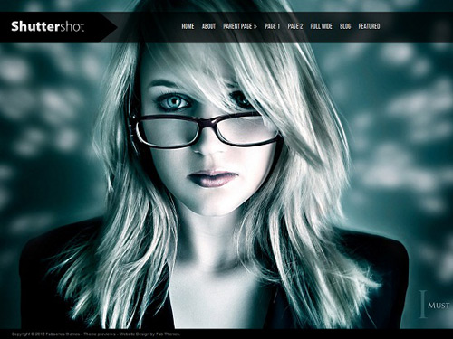 professional looking wordpress themes