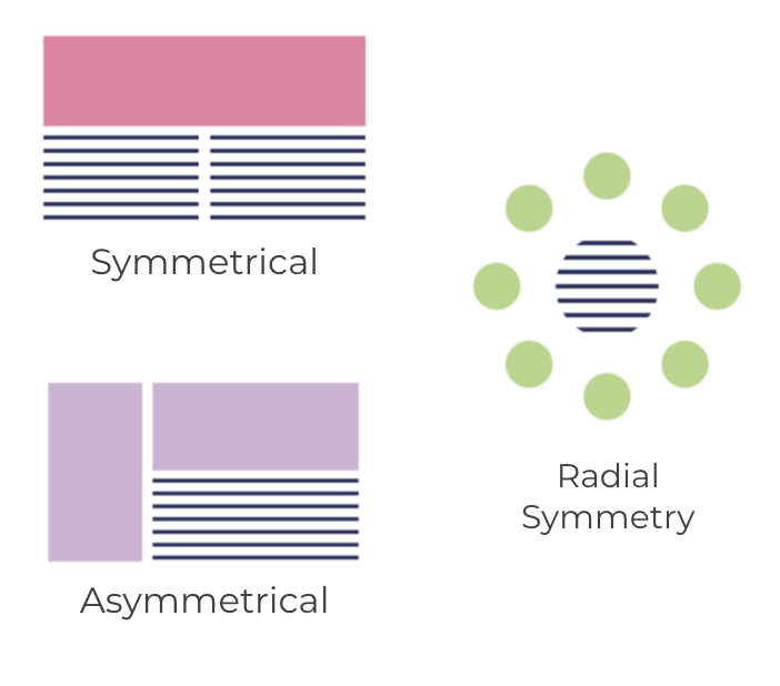 (Visual examples of Symmetry: Made up of exactly similar parts facing each other or around an axis, Asymmetry: A lack of equality or equivalence between parts or aspects and Radial Symmetry: Defined as symmetry around a central axis)