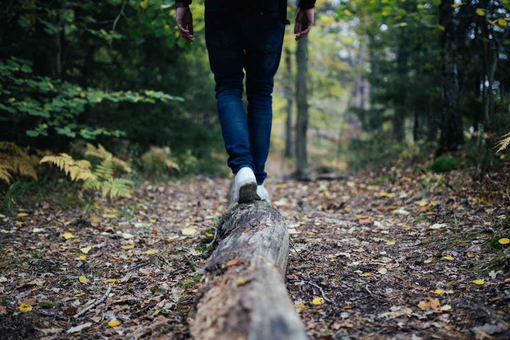 A person balancing and walking across a log in a trail in a forest