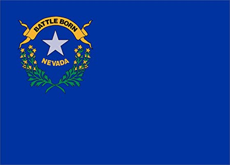 "The Nevada state flag. It says ""BATTLE BORN."""
