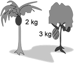 Jika gaya gravitasi di tempat itu 10 m/s2 maka perbandingan energi potensial buah kelapa dan buah nangka adalah ….
