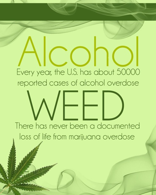 alcohol addiction cannot be compared to marijuana