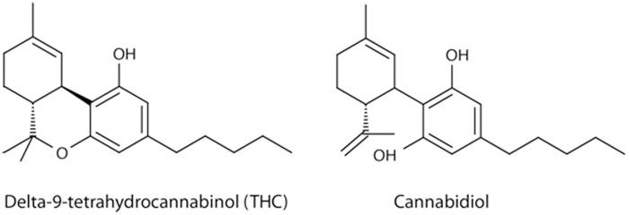 marijuana chemistry 101