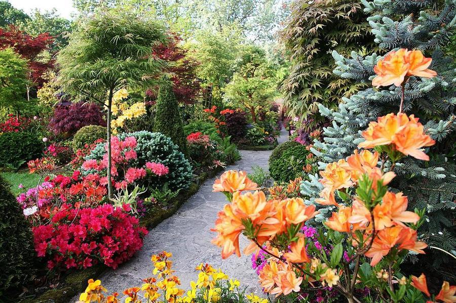 английский сад фото